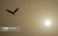 هشدار هواشناسی نسبت به آلودگی هوای تهران و ۵ شهر دیگر