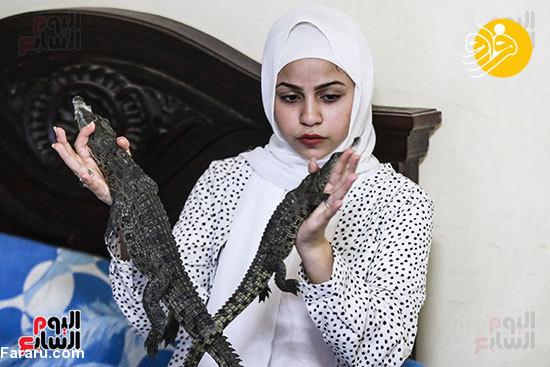 تمساح پرورش دختر ۱۵ ساله دراتاق خود+عکس
