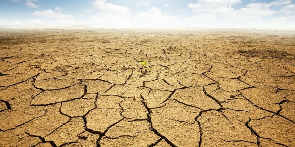 خشکسالی و مشکلات آن | مدیریت بحران خشکسالی و عوارض آن در ایران