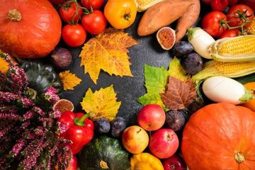 این میوه های شفابخش را پاییز حتما باید بخورید