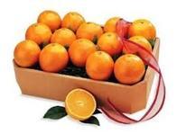 دوباره پرتقالهای رنگ شده آمد