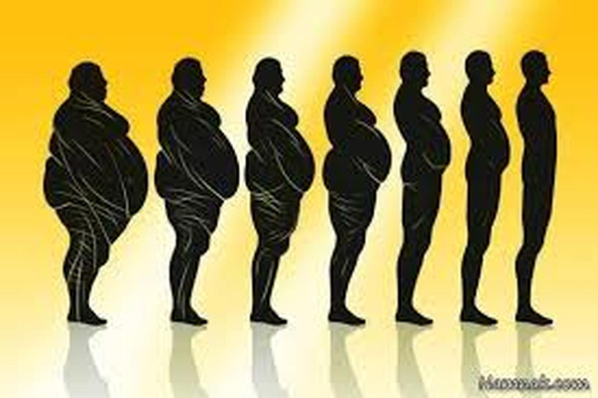 چرا تلاش میکنید اما وزن کم نمیکنید؟