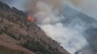 آتش سوزی در جنگلهای گالیکش گلستان
